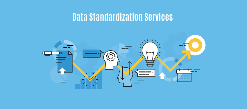 Data Standardization Services